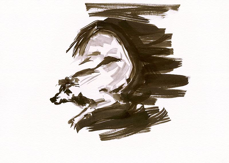 Hund im Zeichen des Zen1 1