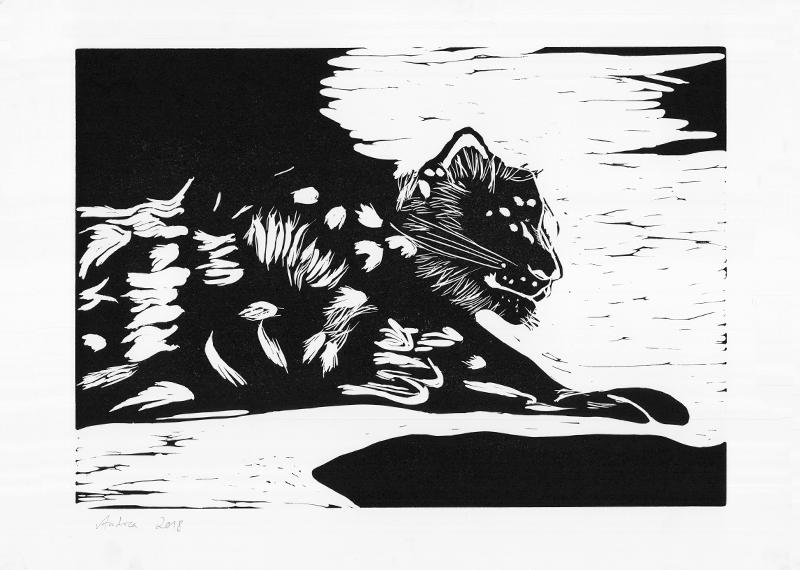 Léopard des neiges © Andreja Soleil